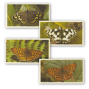 British Butterflies (Large - 25) Grandee 1983