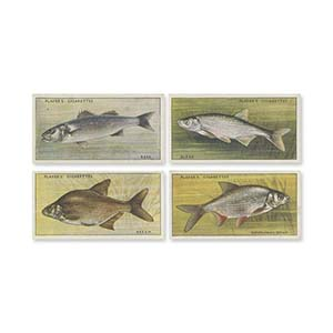 Fresh-Water Fishes (50) Player's 1933