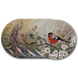 5 Tirschenreuth Bird Porcelain Plates
