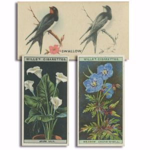 3 x Cigarette Card Part Sets