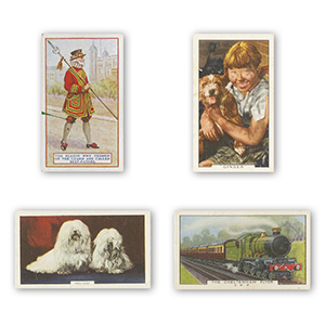 1000+ Gallaher Cigarette Card Bundle
