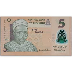 5 Naira Nigerian Bank Note