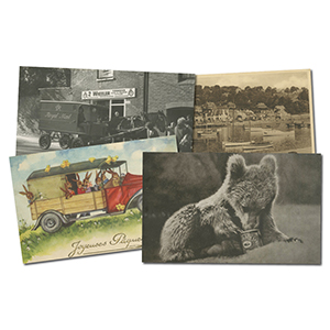 50+ Assorted Postcards