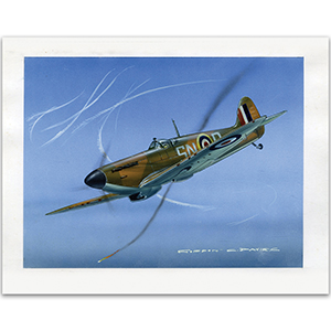 Battle of Britain Supermarine Spitfire by Gordon C Davies
