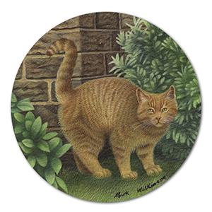 British Shorthair Cat artwork by Mark Wilkinson