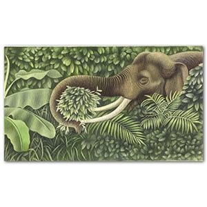 Elephant artwork by Mark Wilkinson