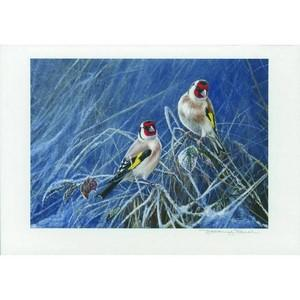 Framed signed J Paul Print - Gold Finches
