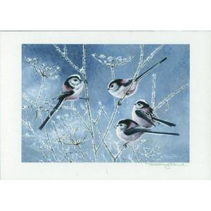 Framed signed J Paul Print - Long Tailed Tits