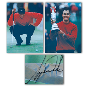 Tiger Woods - Autograph - Signed Colour Photograph -  Framed