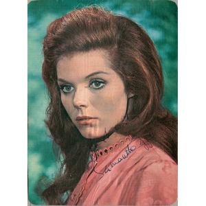 Samantha Eggar - Autograph - Signed Colour Photograph