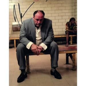 James Gandolfini - Autograph - Signed Colour Photograph