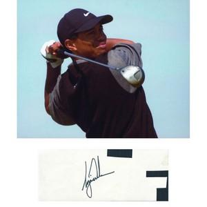 Tiger Woods - Autograph - Signature Mounted with Colour Photograph