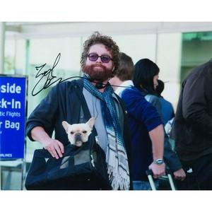 Zach Galifianakis - Autograph - Signed Colour Photograph