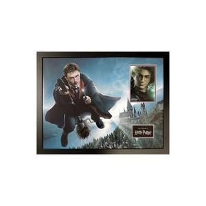 Daniel Radcliffe (Framed)