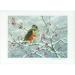 J.Paul Redwing (UK stamp) Signed Print
